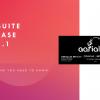 NetSuite Release 2021.1